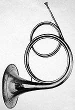 A natural horn